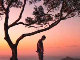 young man standing next to a giant tree in a forest full of trees while the sun rise